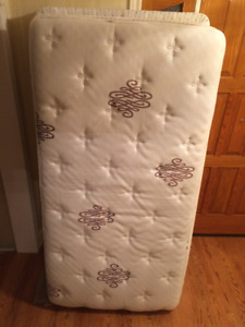 Twin Mattress by Serta (Perfect Sleeper)