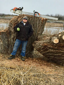 Forestry & Arboriculture Services