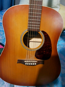 Seagull entourage rustic acoustic for trade