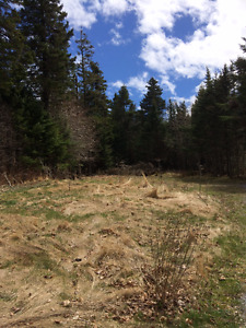 Vacant Lot with well on Anthony's Cove Rd- Bay of Fundy views!