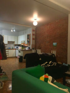 Great Apartment, heart of the Plateau! sublet Jan1-March1 (flex)
