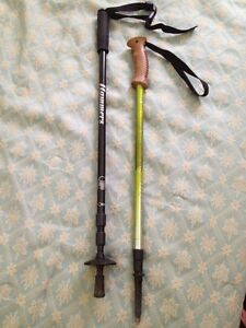 Hiking Stick $10 each