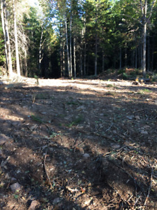 Washedemoak Lake 1 acre lot with water access