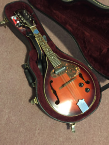 Electric Mandolin and Case