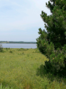 Waterview 2 acre lot