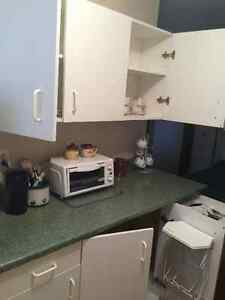 Bachelor Apartment Available February 1