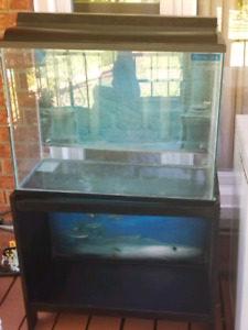 Large 40 gallon fish tank with stand, light and filter