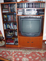 Sony TV and TV cabnit
