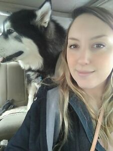 Dog walker Kitchener / Waterloo Kitchener Area image 1