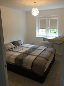 Room to rent (Armadale Train Station)