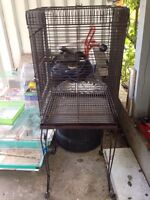 Beautiful parrot cage