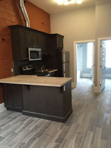 Downtown ~ 1 bedroom ~ Newly Renovated ~ In Suite laundry