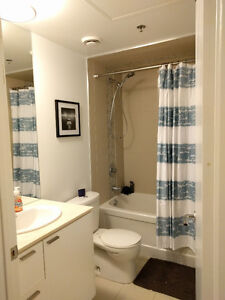 1 Bedroom condo on King st W   Sept 15th