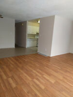Three bedroom flat with f/s w/d and utilities included