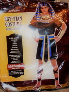 Mens Egyptian one size halloween costume $49.99 selling for $30