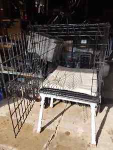 Dog Cages for sale London Ontario image 2