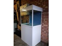 Sumped Marine Tank - Full Set Up - 300L - Everything Needed