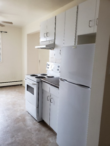 One bedroom apartment for rent at 11940-104 Street NW