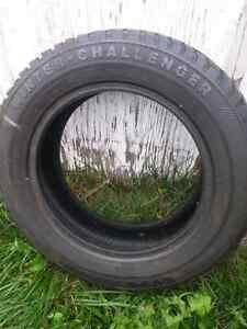Wanli Winter Challenge Tires 175 65 14