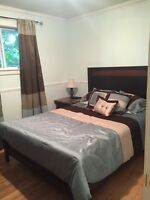 Newly Renovated 3Bed home SKYLINE ACRES (Everything Included)