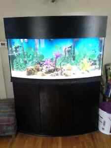 72gallon oceanic bowfront aquarium,everything, trade for180gal +