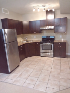 Basement suite for rent immediately in Skyview ranch