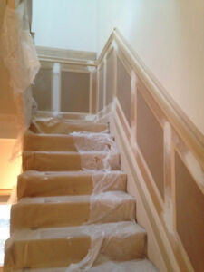 Professional Experience Painter