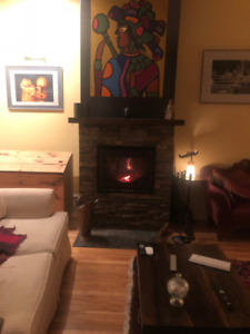 Bis Nova slow combustion high efficiency fire place.