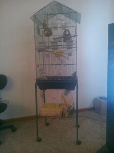 1 Large Bird cage, 1 smaller bird cage