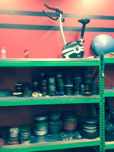 standard steel weight lifting set