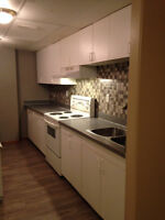 Basement Suite in Sexsmith