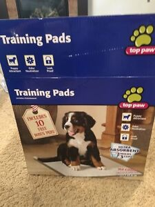 Training Pads for Sale