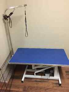 Brand New Hydraulic Grooming Table