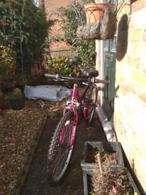 Girls mountain bike.