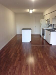 Just became available. 1 bedroom basement suite near TRU