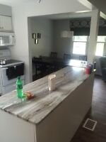 Gorgeous newly renovated home 2 rooms. 1 immed. 1 December