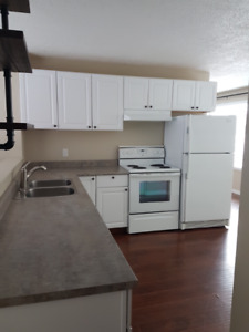 Nicely Updated Spacious 3 Bdrm Available Dec 1st!