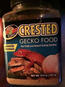 Gecko food
