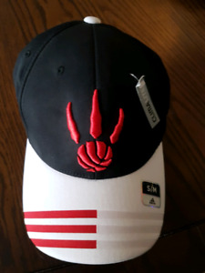 Toronto Raptors Basketball Hat