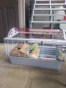 Giunea pig or rabbit cage with all accessories.
