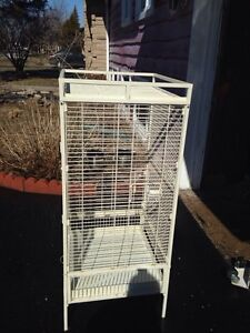 Parrot cage perroquet 100$ must go