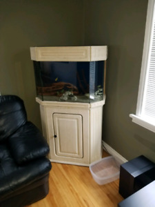 Fish tank with stand and accessories.