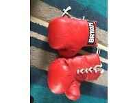 Bryan boxing gloves