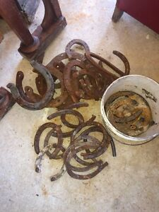 Vintage horse shoes for sale
