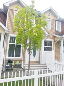 Townhouse for rent in Terwillegar area