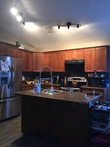 2bed 1 bath main floor pet friendly everything included Nov 1st