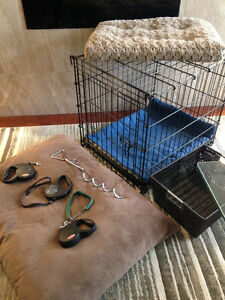 Dog Kennel Package