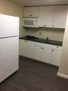 Newly Renovated *PRIVATE* ROOM IN A BASEMENT for York U student