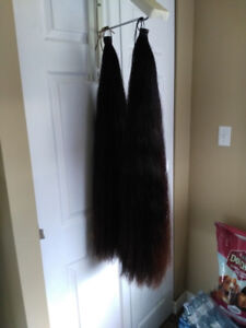 HORSE TAILS FOR SALE