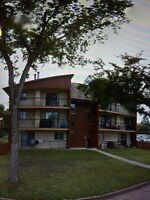 Adult Building Located In Queen Mary Park!!